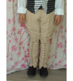 Beige Cotton  Breeches